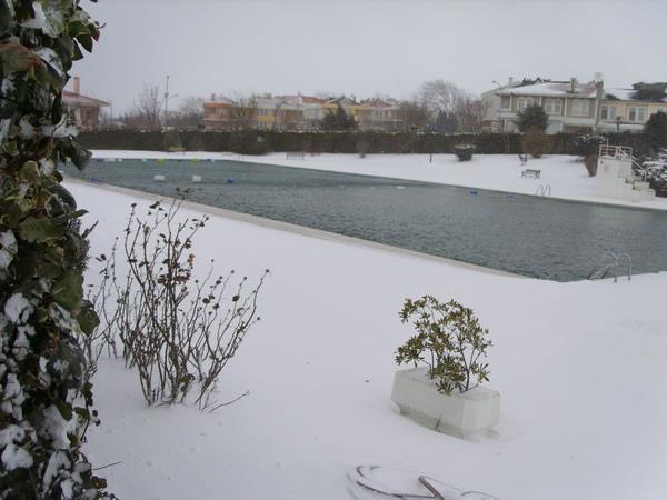 Frozen swimming pool 1